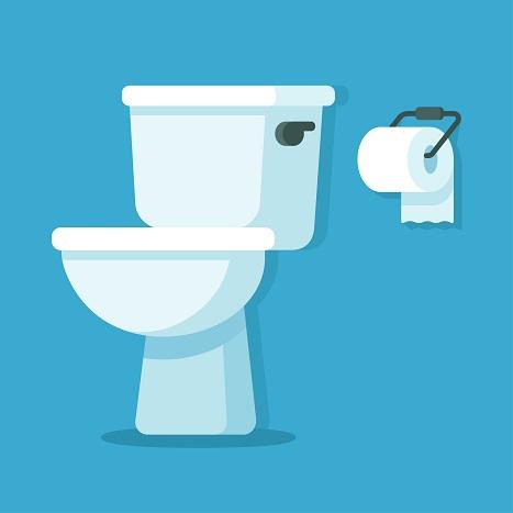 plumbing toilet history