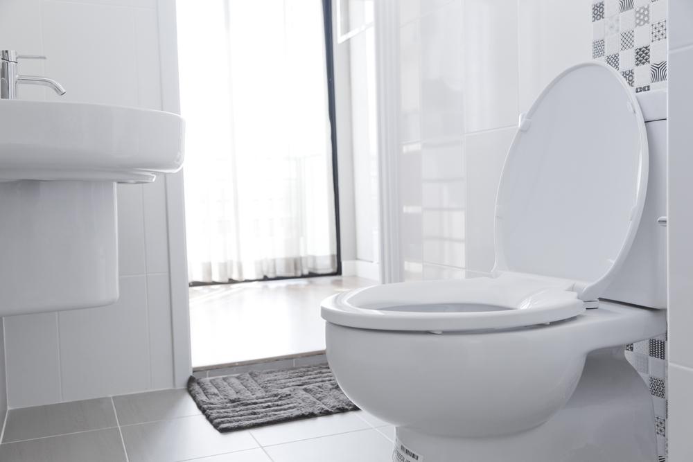 replace toilet new toilet