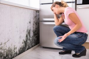 Mold prevention tips