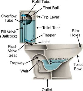 Diagram of a Toilet