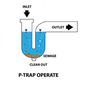 P Trap