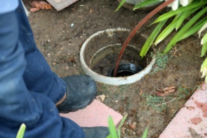 drain backing up from the main